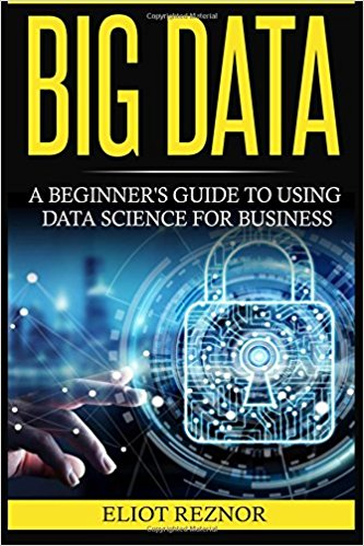 Big Data: A Beginner's Guide to Using Data Science for Business